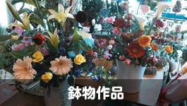 sfloralart(エスフローラルアート)鉢物作品|山形・米沢のお花屋さんアレンジメントならお任せsfloralart(エスフローラルアート)