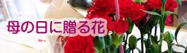sfloralart(エスフローラルアート)母の日に贈る花|山形・米沢のお花屋さんアレンジメントならお任せsfloralart(エスフローラルアート)